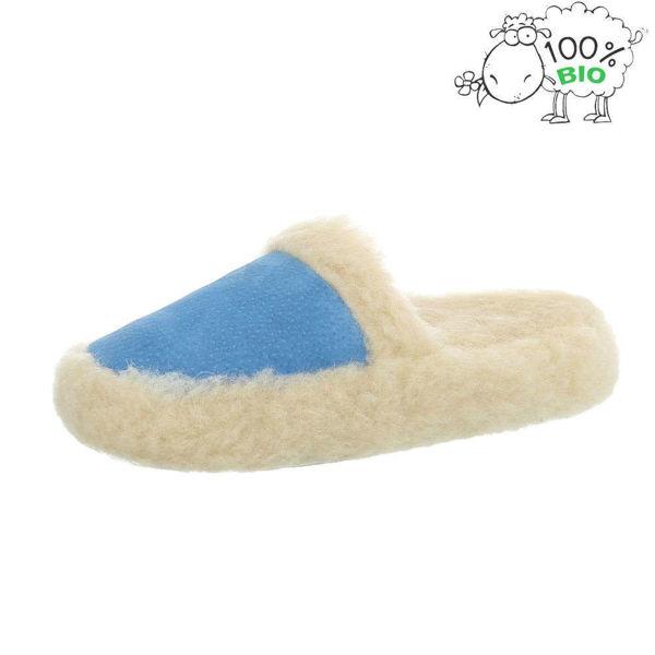 Blue-slippers-482044