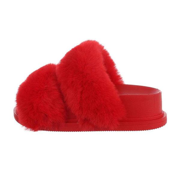 Punase-karvaga-platud-606558